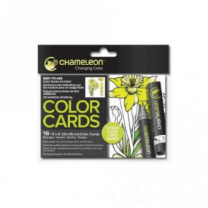 Color Cards Flowers